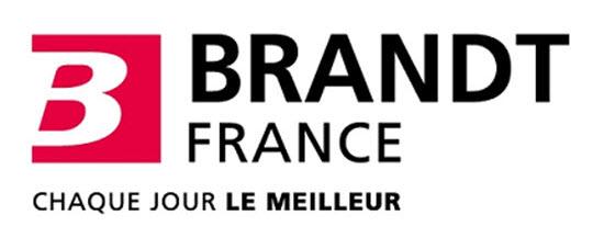 brandt group dynamics international. Black Bedroom Furniture Sets. Home Design Ideas