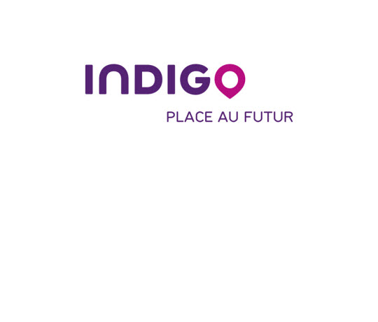 INDIGO PARK - Global ERP - NAV